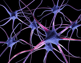Neurotransmitter Testing in Jackson, MS